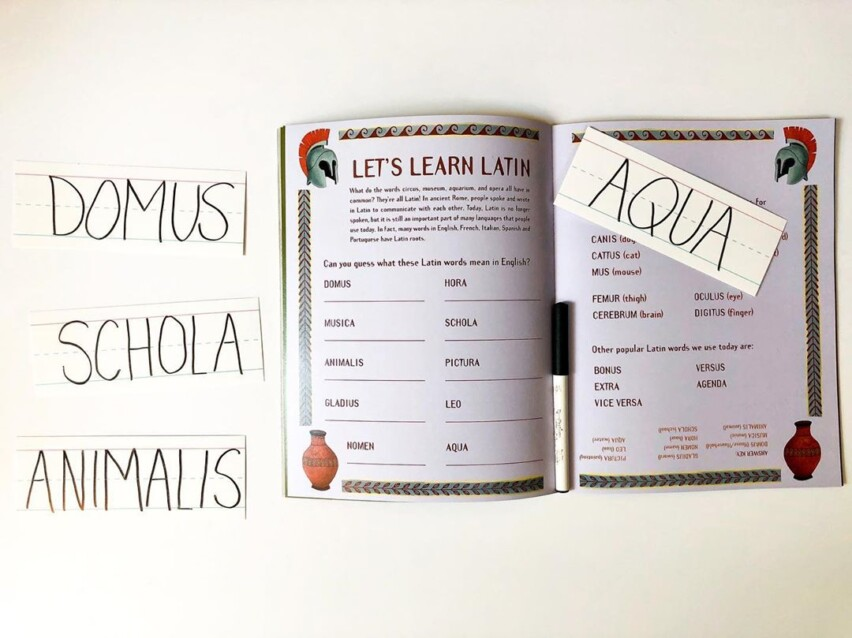 Learn Latin in Issue Four